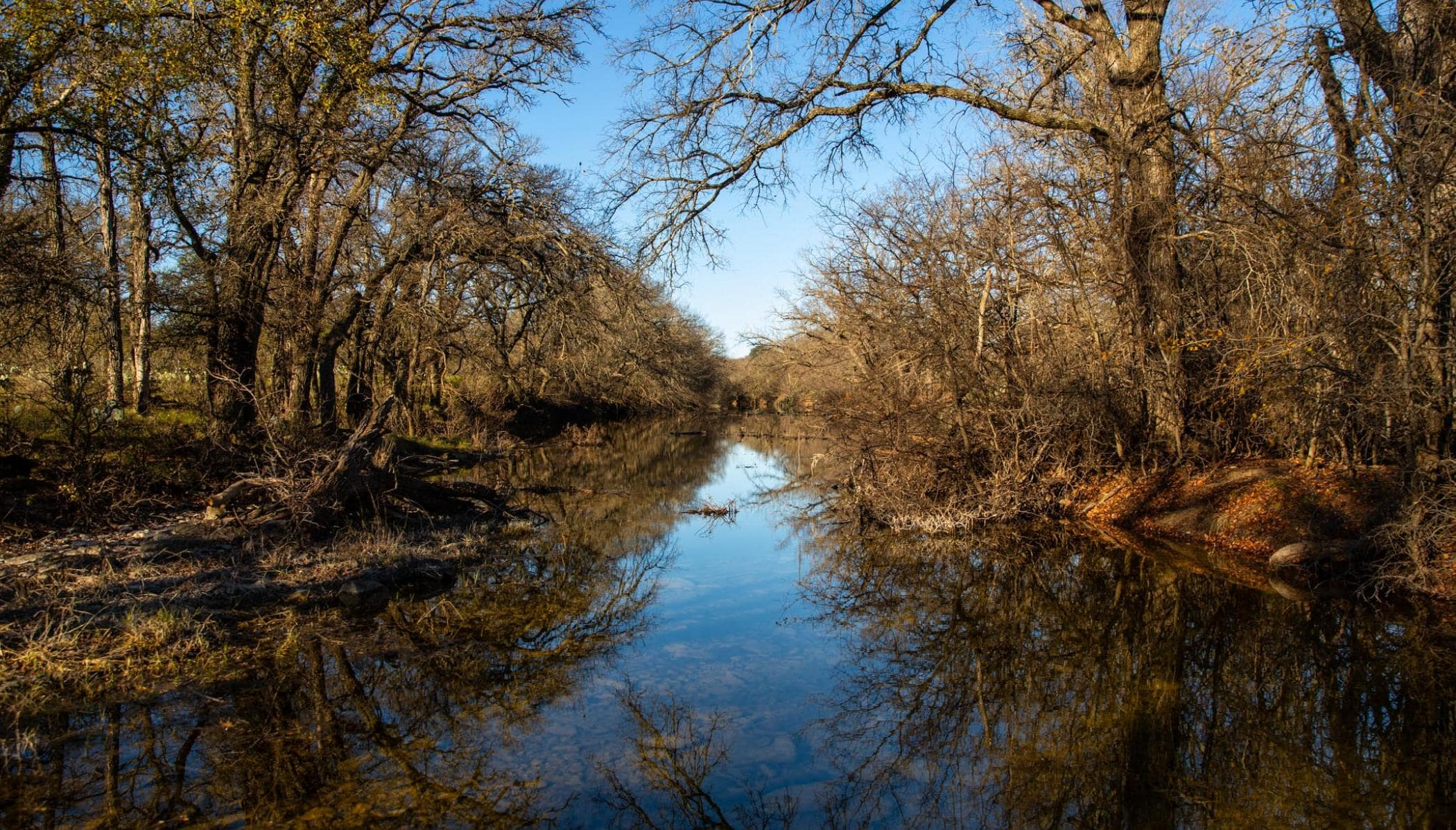 calm creek and trees in triple draw ranch