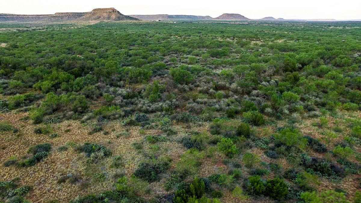 aerial view of a Texas ranch with shrubs and mesas