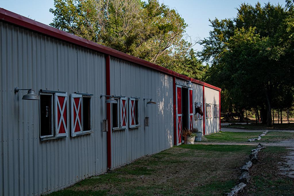 three horses looking out from the barn at buena vida ranch