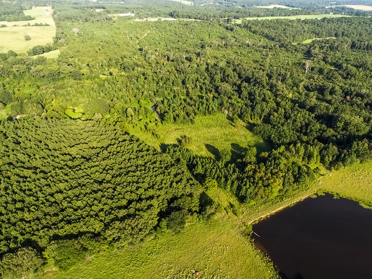 aerial view of forests and fields at triple creek ranch