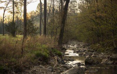 Almond Creek Ranch