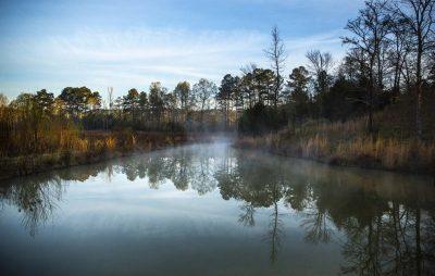 Almond Creek (Photo by Shannon Faulk)